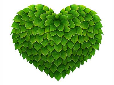 Green heart green heart leaves