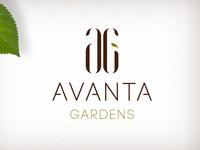 Avanta Gardens Branding