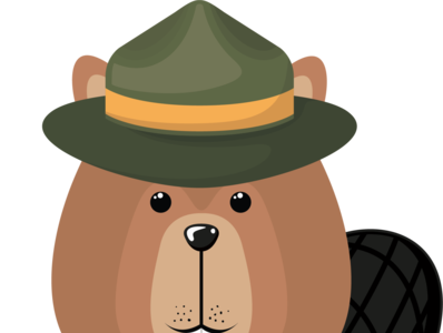 Beaver design illustration