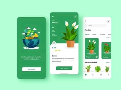 Plant Ordering App user interface