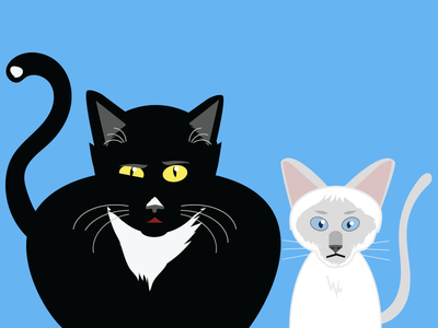 Two Cats siamese black cat characters illustration cats