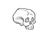 Doodlin Skulls