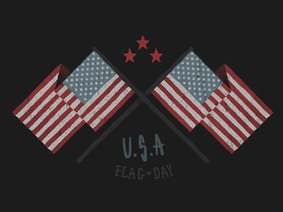 Flag day dribbble
