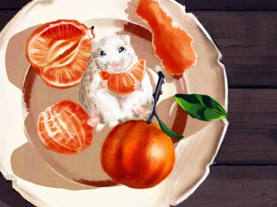 Mouse 🍊🐭 plate clementine eat happy celebration new year mouse design