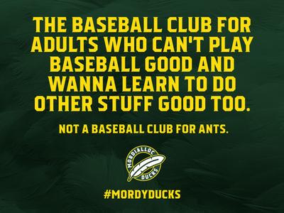 Mordialloc Ducks Social Media Graphics ducks sports sport design mordialloc baseball