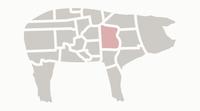 Mission Gastro Pig