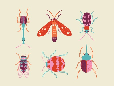Bugs nature practice fun vector illustration insects bugs