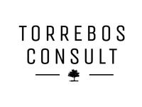Torrebos consult logo