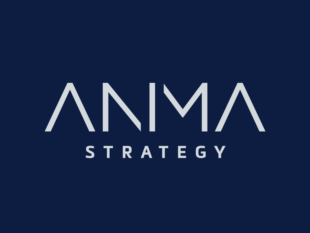Anima Strategy navy lettering type design vector consultant reveal strategy identity branding geometric geometric font typography logo