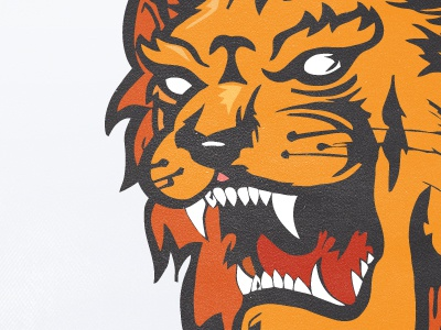 Lion lion pad red orange illustration