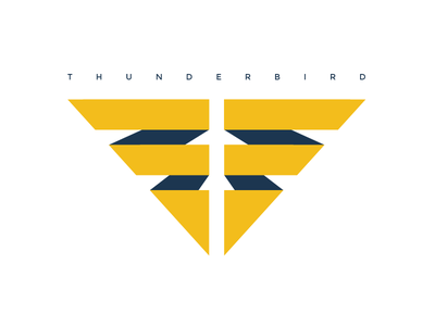 Thunderbird Logo thunder graphic design art direction adobe photoshop adobe illustrator conceptual lightening mark thunderbird logo branding brainstorming