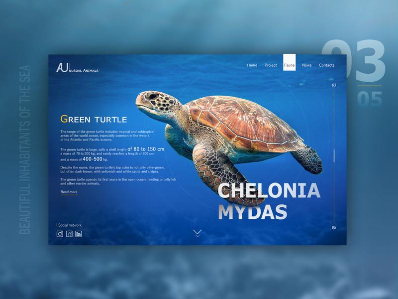 Amazing inhabitants of the sea №3 природа web design retouch design ui ux key visual interface