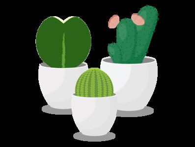 Trio of Succulents icon flaticon logo illustration design art adobe illustrator cute art vector cute cactus succulents plants hoya hoyakerrii