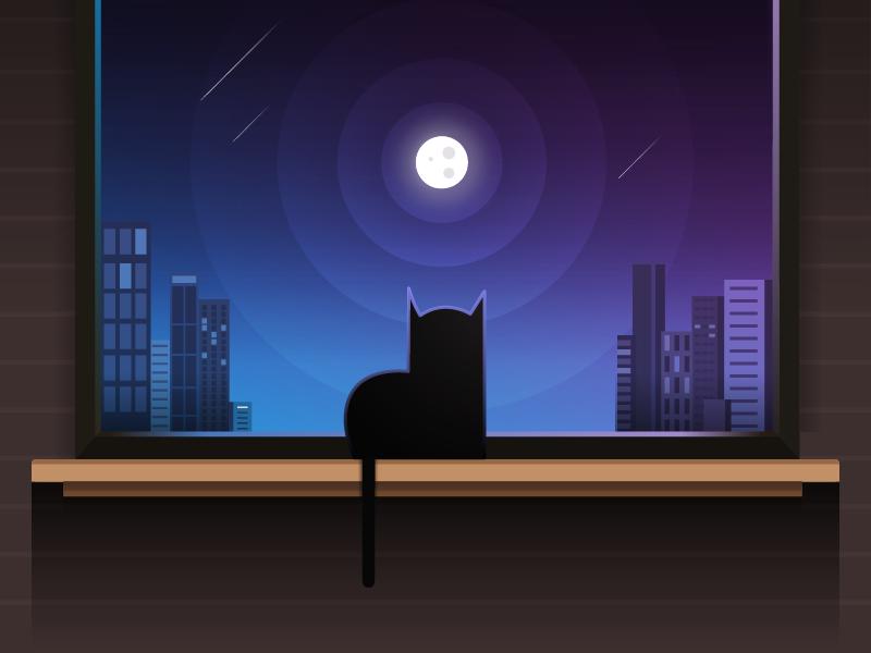 Night View night view blue buildings illustration night window cat