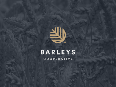 BARLEYS concept graphic design graphic logo design logo