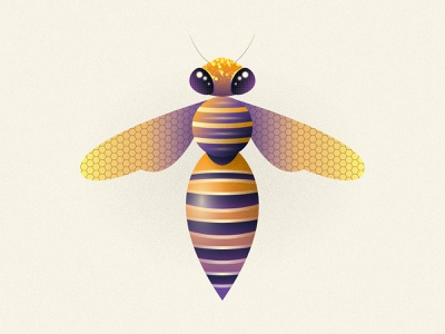 Apis abeille bee apidae apoidea leoalexandre leo alexandre animal design illustration wildlife vector nature minimal insects insect insecta