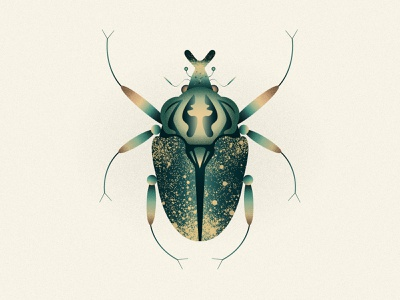 Goliathus beetle goliathbeetle goliath scarab scarabee leo alexandre leoalexandre insecta coleoptera wildlife vector nature minimal insects insect illustration design animal