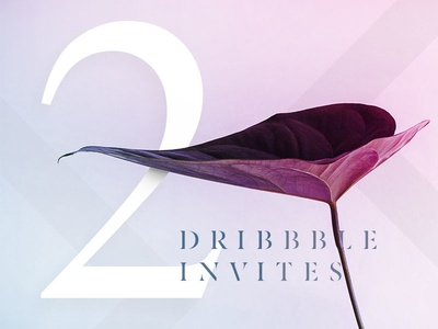 2 x Dribbble Invites Giveaway player prospect giveaway stencil gradient neon leaf plant dribbble invite