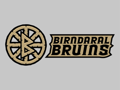 Birndaral Bruins blood bowl fanatasy sports fantasy teams dwarfs bruins boston bruins