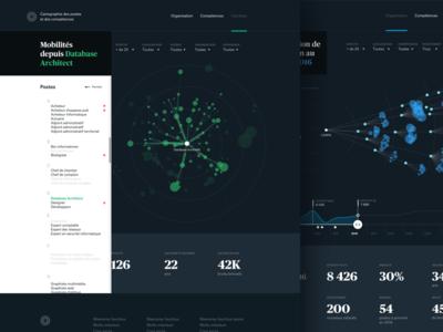 HR decision support tool #3 website viz human ressources data visualisation data web design