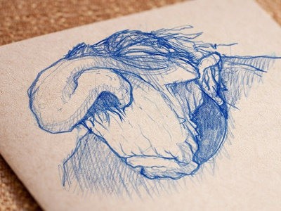 Nosy norris nosehair drawing