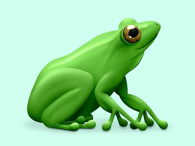 FrogRadio Mac App Icon icon mac app frog
