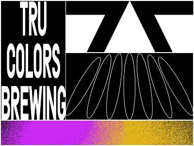 Tru Colors Experiments logotype mark letters logo type color design branding focus lab typography
