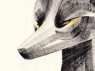 silver fox animals illustration fox gouache