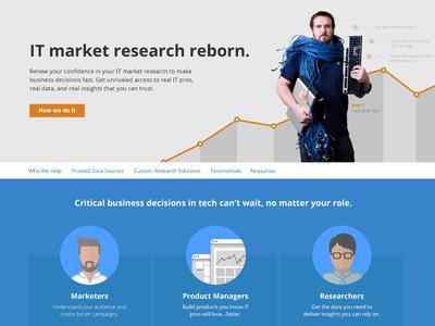 IT Market Research Reborn landing page website design market research research it market