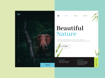 Web Layout For Wildlife clean ui ux design branding ui minimal elephant photoshop photography nature xd design elegant clean website
