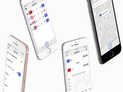 Curvert App Concept currency app app europe flags national currency curvert