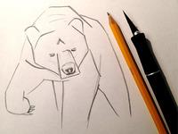 Bear Illo WIP