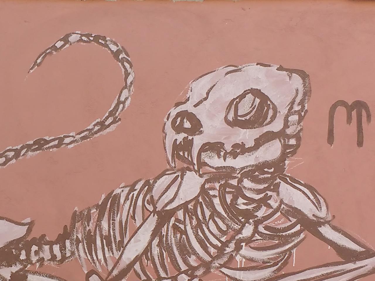 Cat Talk street art graffiti skull design art illustration drawing