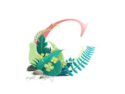 Floral C illustration vector clover leaf four letter illustrated dropcap plants floral