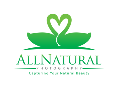 All Natural Photography 01 moments capture camera spring swan photography photo