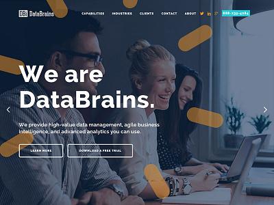 DataBrains Website hero slider single page website