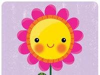 Seasons flower