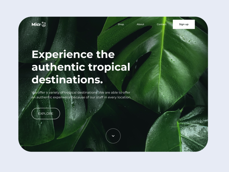 Micro - A travel agency ui design