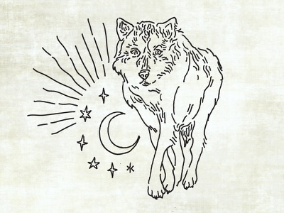 Wolf Illustration wolf monoline hand drawn illustration dog moon sky stars occult native american