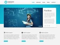 NMendes website