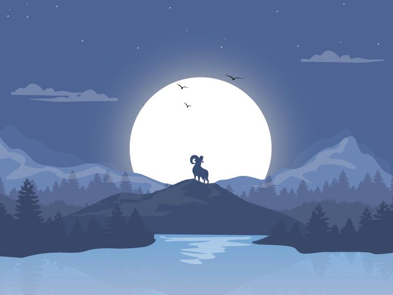 Mountain Goat night debute nature goat mountain art vector logo flat design illustration icon