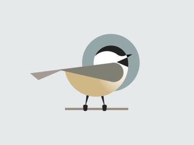 Bird #4 Chickadee simple vector bird maine brand illustration design chickadee