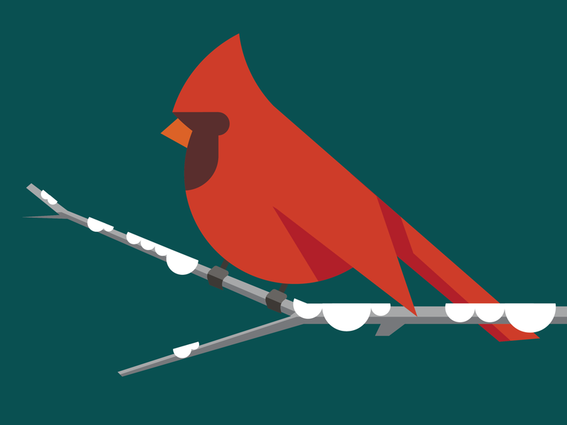 Bird #6 Cardinal illustrator design simple icon vector illustraion bird illustration bird cardinal