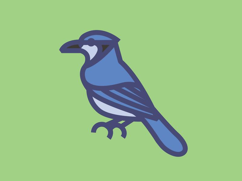 Bird #8 Fat Line Blue Jay aven branding bird illustration vector icon illustration blue jay bird