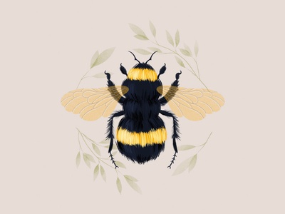 bumblebee art procreate digital painting digital art illustration