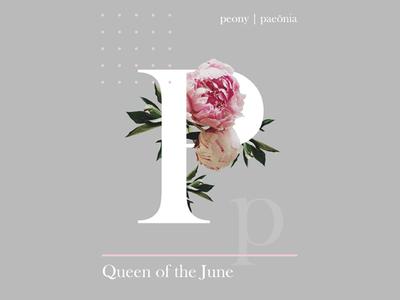 queen of the June letters typography design digital art graphic design poster