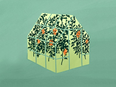 tomato greenhouse digital painting procreate illustration art digital art