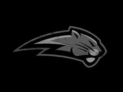 Bigcat big cat sports profile ac-dc black