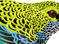 Tanager (bird) detail