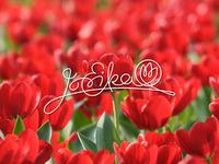 Jó Erika logo
